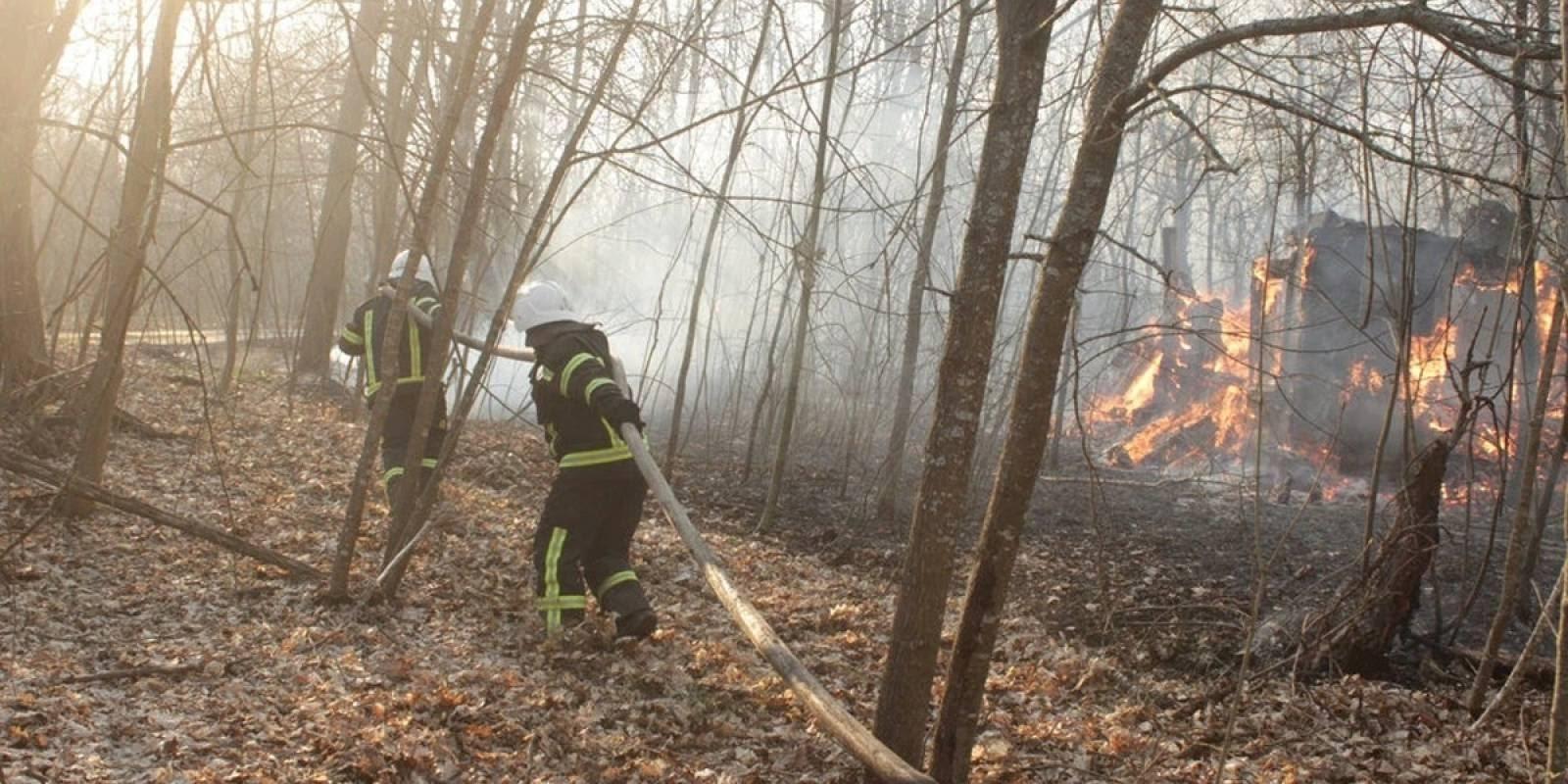 Chernóbil: radiación se reactiva por incendios forestales en Ucrania